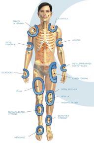 Cuerpo Humano Ondatron